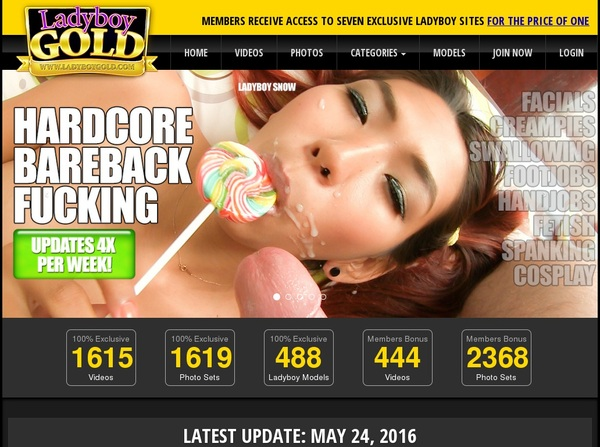 Ladyboygold.com Preview